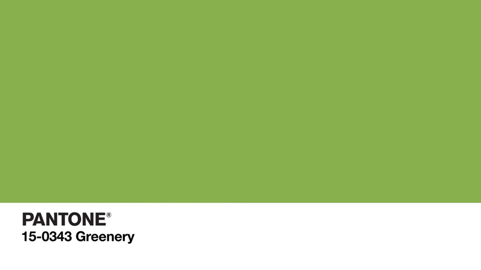 Pantone: il 2017 è Greenery